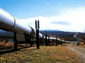 Экологи настойчиво призывают группу компаний «Газпром» к диалогу по проблемам Камчатки