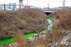 В Приморье появилась зеленая река