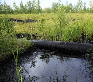 Вовремя осознать, что бы не потерять... Или экологическая ответственность нефтяных компаний