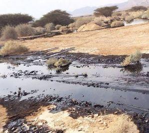 Заповедник в Израиле залило нефтью